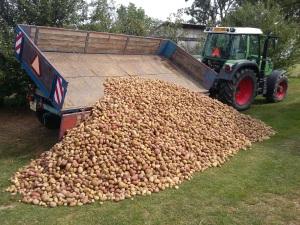 traktor-s-bramborama